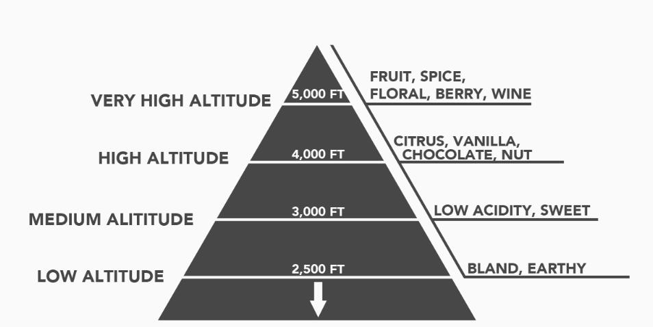 Altitude flavours