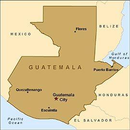Guatemala Finca La Ruda SHB Organic RFA EP Arabica Coffee