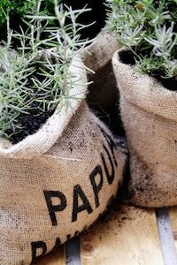 Hessian Bag Planter Pots