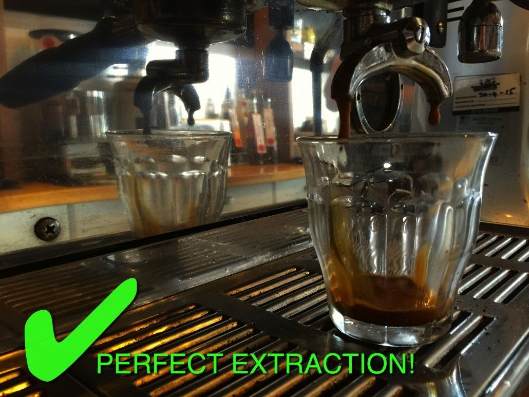 perfectly extracted coffee shot