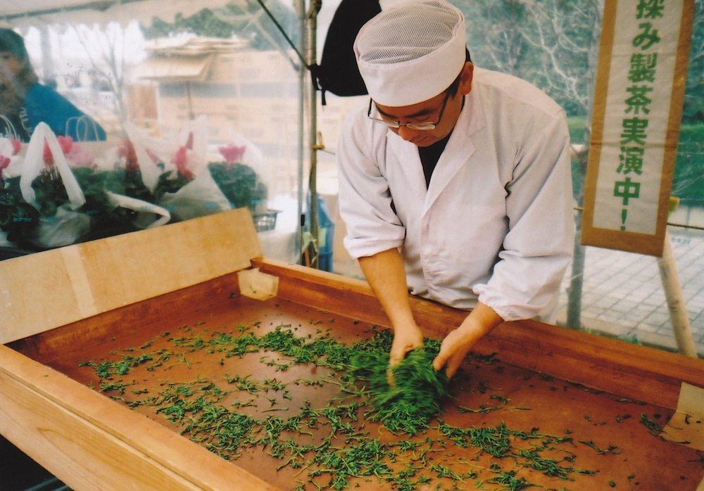 green tea manufacturing process