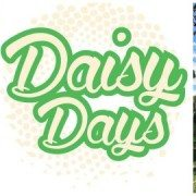 Daisy Days Travelling Cafe & Bar
